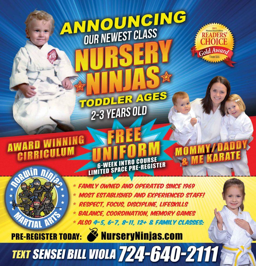nursery ninjas karate